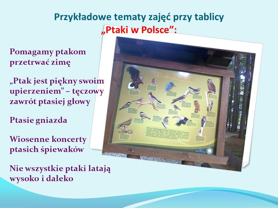 Przykładowe tematy zajęć przy tablicy Ptaki w Polsce: Pomagamy ptakom przetrwać zimę Ptak jest piękny swoim upierzeniem – tęczowy zawrót ptasiej głowy Ptasie gniazda Wiosenne koncerty ptasich śpiewaków Nie wszystkie ptaki latają wysoko i daleko