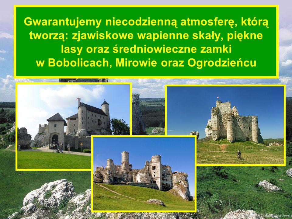 Gwarantujemy niecodzienną atmosferę, którą tworzą: zjawiskowe wapienne skały, piękne lasy oraz średniowieczne zamki w Bobolicach, Mirowie oraz Ogrodzieńcu