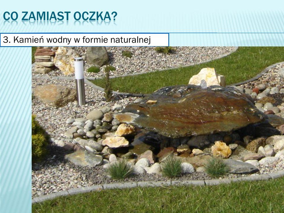 3. Kamień wodny w formie naturalnej