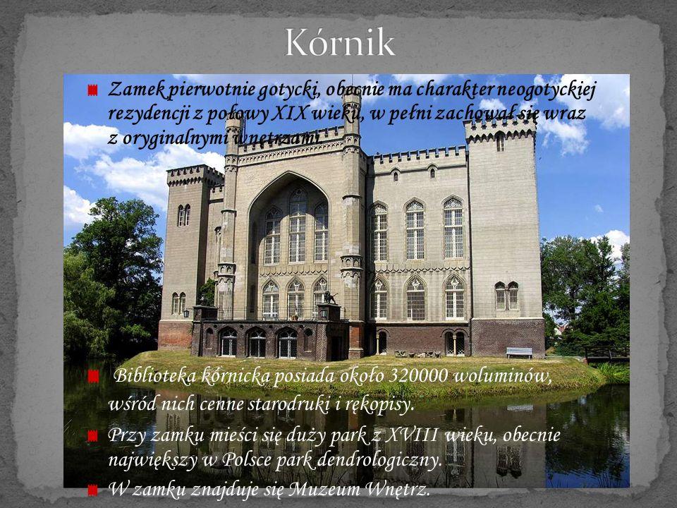 Gotycki zamek wzniesiony na górze nad brzegiem Czarnej Przemszy.
