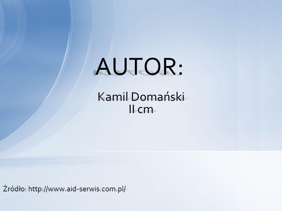 Kamil Domański II cm AUTOR: Źródło: http://www.aid-serwis.com.pl/
