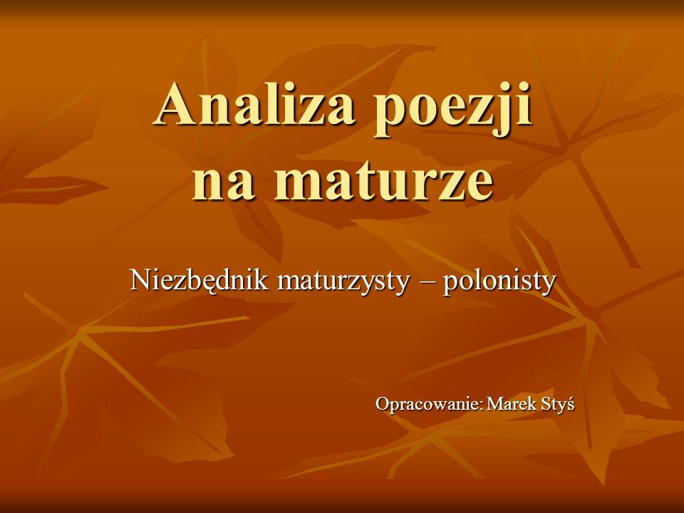 Analiza (gr.