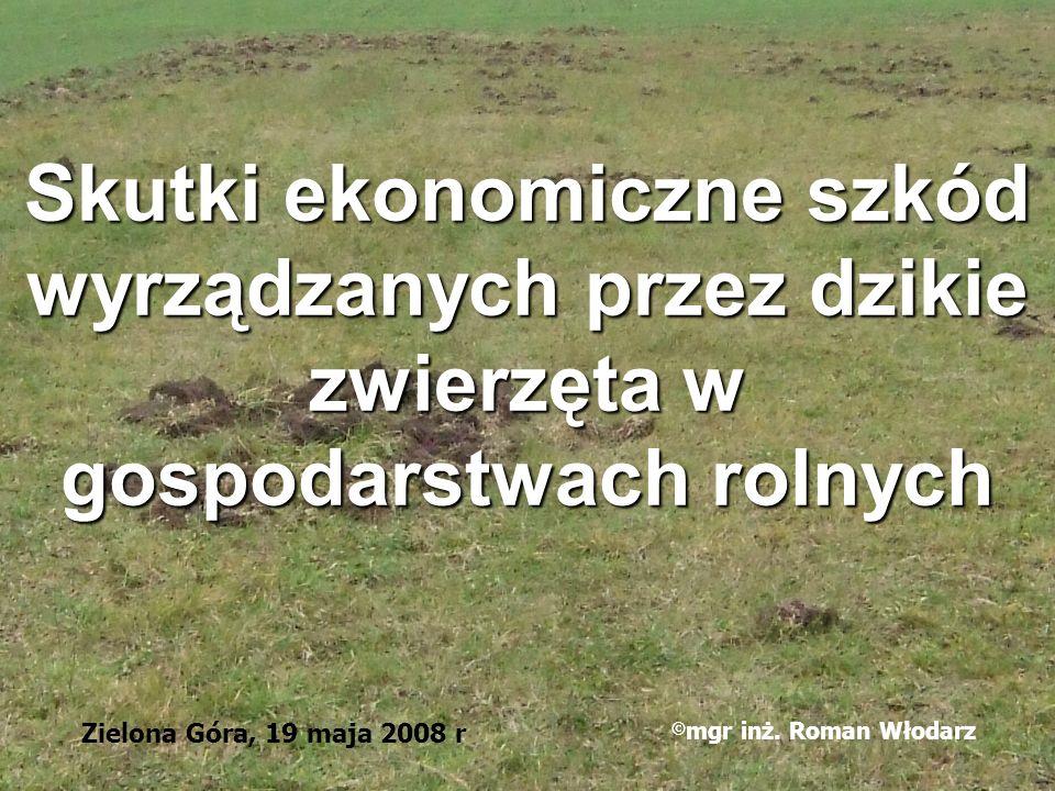 Skutki ekonomiczne szkód wyrządzanych przez dzikie zwierzęta w gospodarstwach rolnych Zielona Góra, 19 maja 2008 r © mgr inż. Roman Włodarz