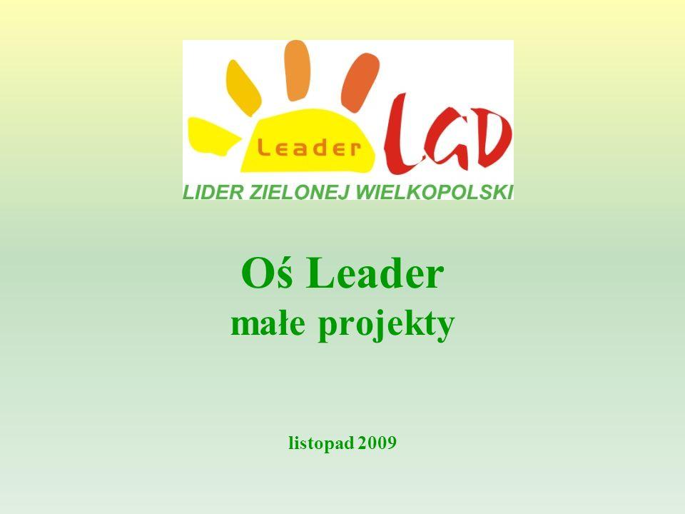 Oś Leader małe projekty listopad 2009