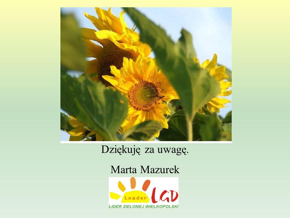 Dziękuję za uwagę. Marta Mazurek