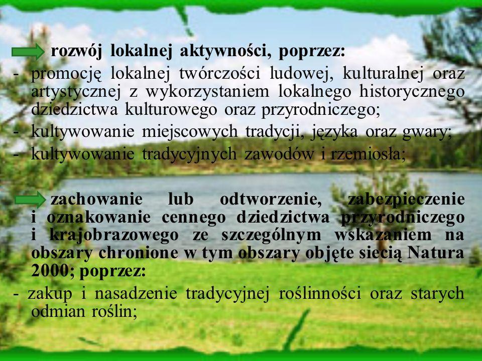 rozwój lokalnej aktywności, poprzez: -promocję lokalnej twórczości ludowej, kulturalnej oraz artystycznej z wykorzystaniem lokalnego historycznego dziedzictwa kulturowego oraz przyrodniczego; -kultywowanie miejscowych tradycji, języka oraz gwary; -kultywowanie tradycyjnych zawodów i rzemiosła; zachowanie lub odtworzenie, zabezpieczenie i oznakowanie cennego dziedzictwa przyrodniczego i krajobrazowego ze szczególnym wskazaniem na obszary chronione w tym obszary objęte siecią Natura 2000; poprzez: - zakup i nasadzenie tradycyjnej roślinności oraz starych odmian roślin;