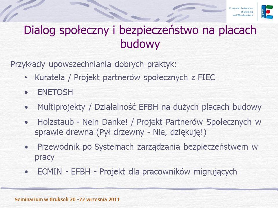 Przykłady upowszechniania dobrych praktyk: Kuratela / Projekt partnerów społecznych z FIEC ENETOSH Multiprojekty / Działalność EFBH na dużych placach budowy Holzstaub - Nein Danke.
