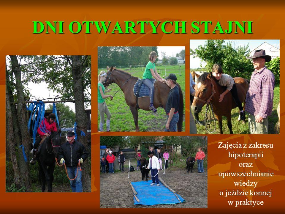 DNI OTWARTYCH STAJNI Zajęcia z zakresu hipoterapii oraz upowszechnianie wiedzy o jeździe konnej w praktyce