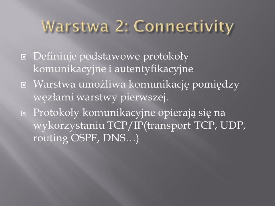 Definiuje podstawowe protokoły komunikacyjne i autentyfikacyjne Warstwa umożliwa komunikację pomiędzy węzłami warstwy pierwszej.