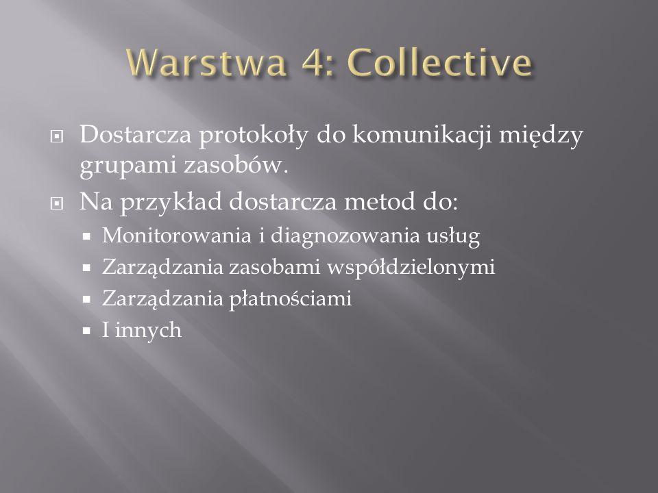 Dostarcza protokoły do komunikacji między grupami zasobów.