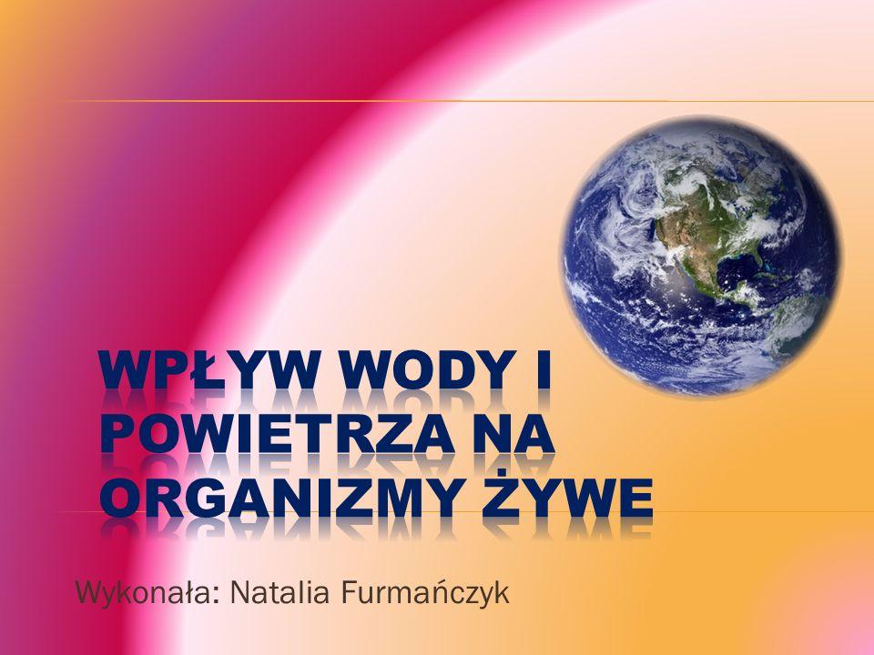 Wykonała: Natalia Furmańczyk