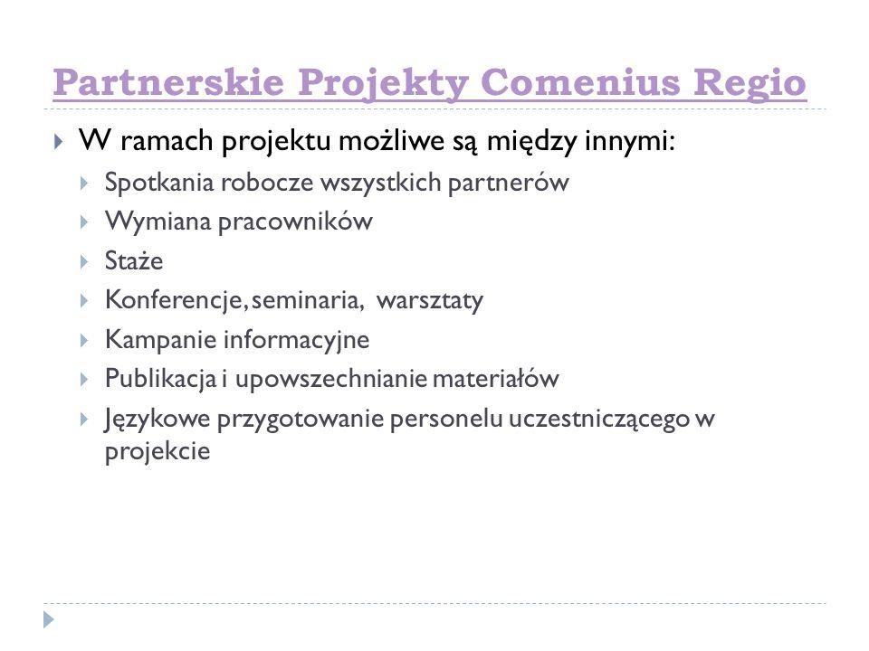 Partnerskie Projekty Comenius Regio W ramach projektu możliwe są między innymi: Spotkania robocze wszystkich partnerów Wymiana pracowników Staże Konfe
