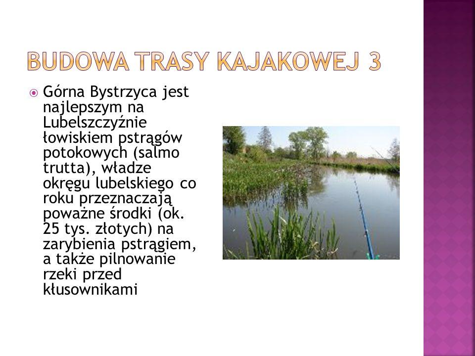 Górna Bystrzyca jest najlepszym na Lubelszczyźnie łowiskiem pstrągów potokowych (salmo trutta), władze okręgu lubelskiego co roku przeznaczają poważne