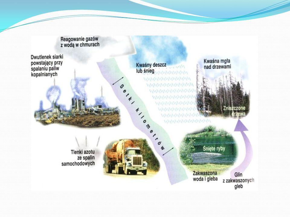 Zanieczyszczenia powietrza Najczęściej i najbardziej zanieczyszczają atmosferę: - dwutlenek węgla, - dwutlenek siarki, - tlenki azotu - oraz pyły.