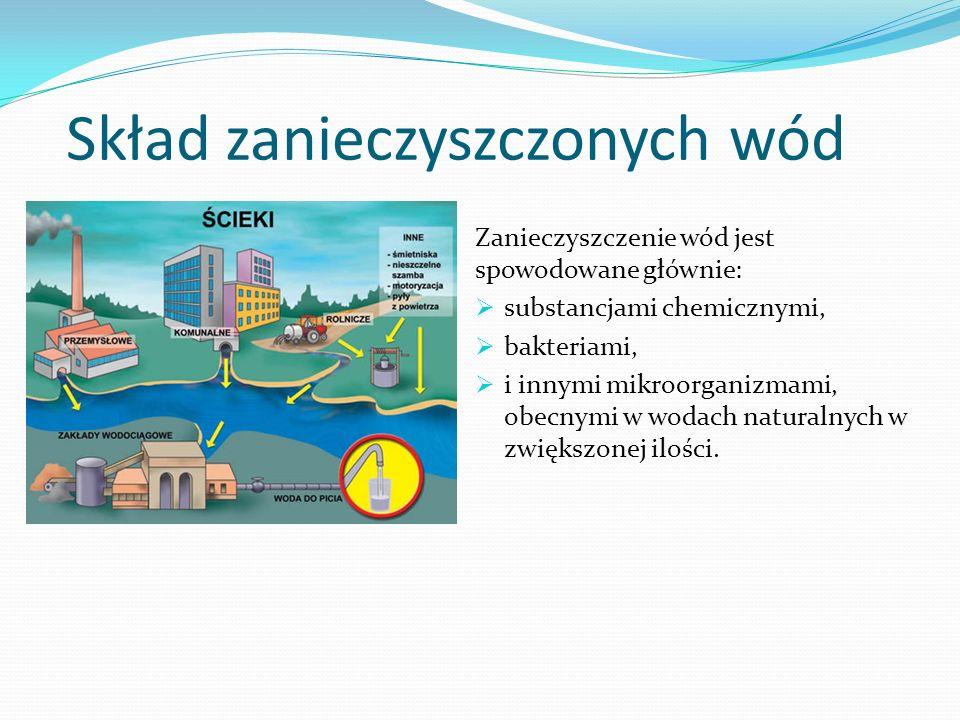 Skład zanieczyszczonych wód Zanieczyszczenie wód jest spowodowane głównie: substancjami chemicznymi, bakteriami, i innymi mikroorganizmami, obecnymi w