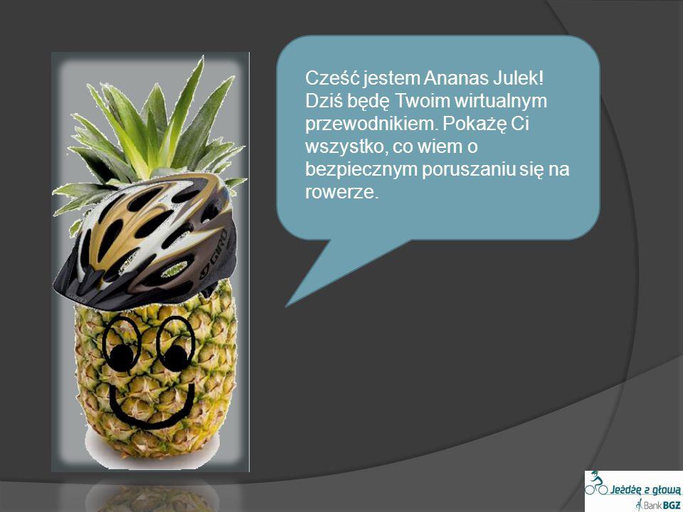 Bibliografia: http://www.targikielce.pl/ http://www.trzebauwazac.pl/ http://www.orlenbezpiecznedrogi.pl/animacj a/ http://odense.pl/ http://rowery.pinger.pl/