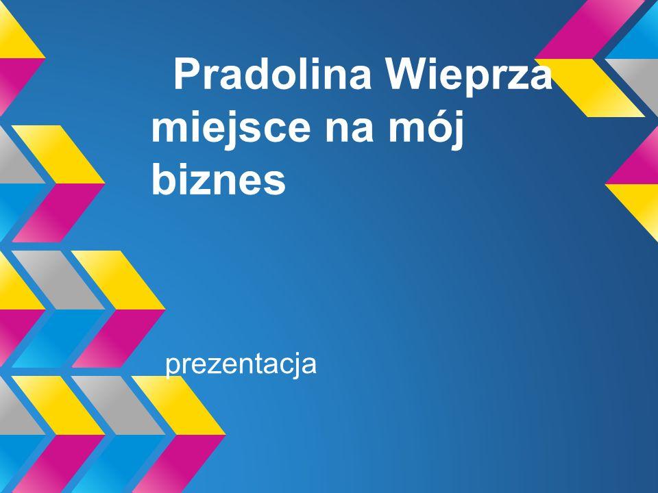Nie tylko Kazimierz Puławy i Nałęczów