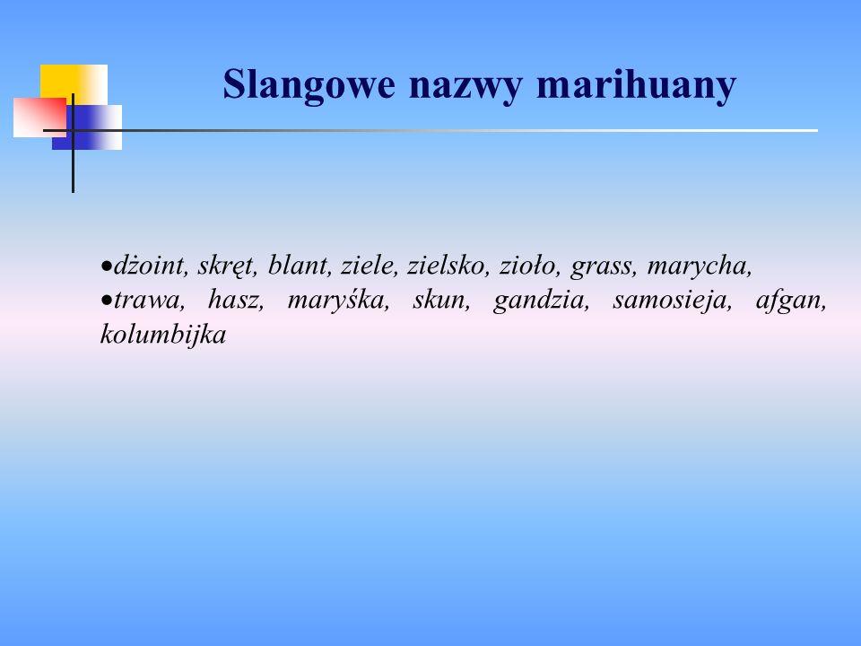dżoint, skręt, blant, ziele, zielsko, zioło, grass, marycha, trawa, hasz, maryśka, skun, gandzia, samosieja, afgan, kolumbijka Slangowe nazwy marihuan