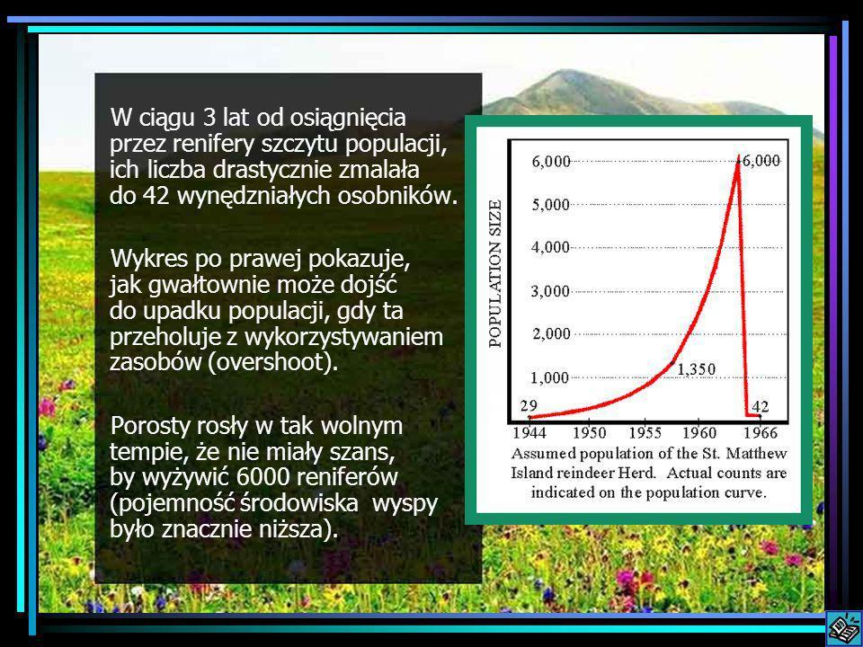 W ciągu 3 lat od osiągnięcia przez renifery szczytu populacji, ich liczba drastycznie zmalała do 42 wynędzniałych osobników. Wykres po prawej pokazuje