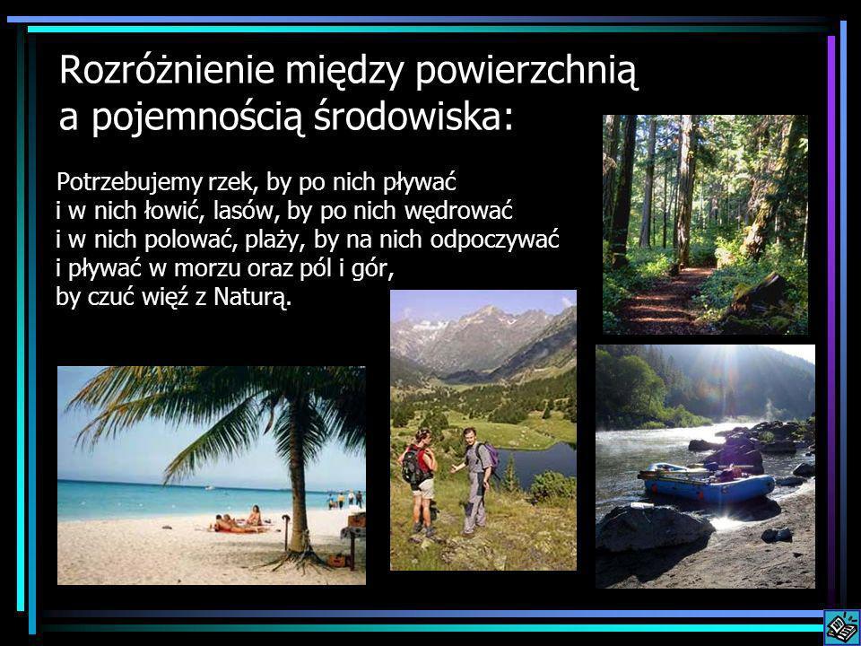 Rozróżnienie między powierzchnią a pojemnością środowiska: Potrzebujemy rzek, by po nich pływać i w nich łowić, lasów, by po nich wędrować i w nich polować, plaży, by na nich odpoczywać i pływać w morzu oraz pól i gór, by czuć więź z Naturą.