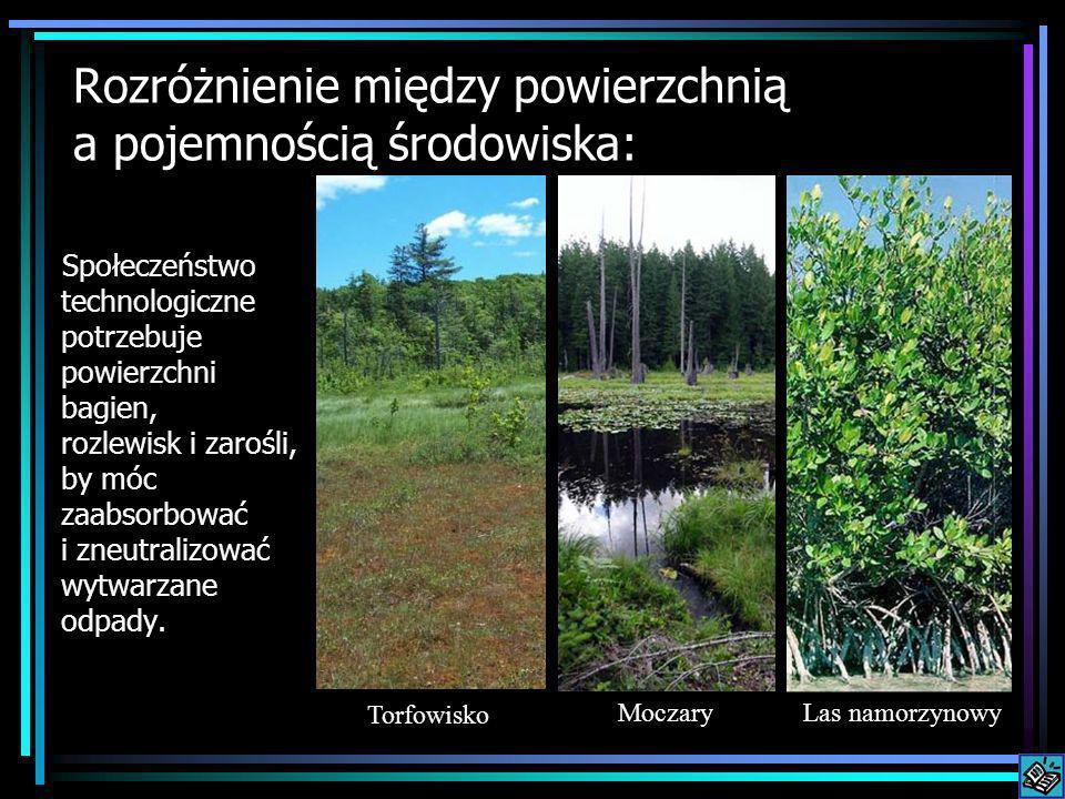Rozróżnienie między powierzchnią a pojemnością środowiska: Społeczeństwo technologiczne potrzebuje powierzchni bagien, rozlewisk i zarośli, by móc zaa