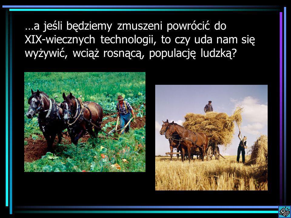 …a jeśli będziemy zmuszeni powrócić do XIX-wiecznych technologii, to czy uda nam się wyżywić, wciąż rosnącą, populację ludzką?