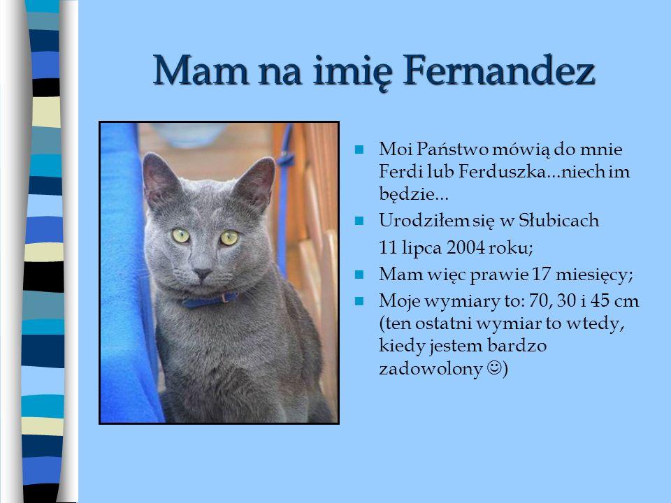 Mam na imię Fernandez Moi Państwo mówią do mnie Ferdi lub Ferduszka...niech im będzie...