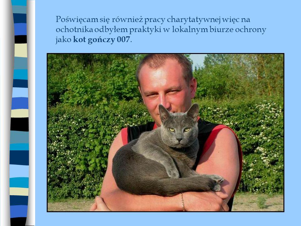 Poświęcam się również pracy charytatywnej więc na ochotnika odbyłem praktyki w lokalnym biurze ochrony jako kot gończy 007.