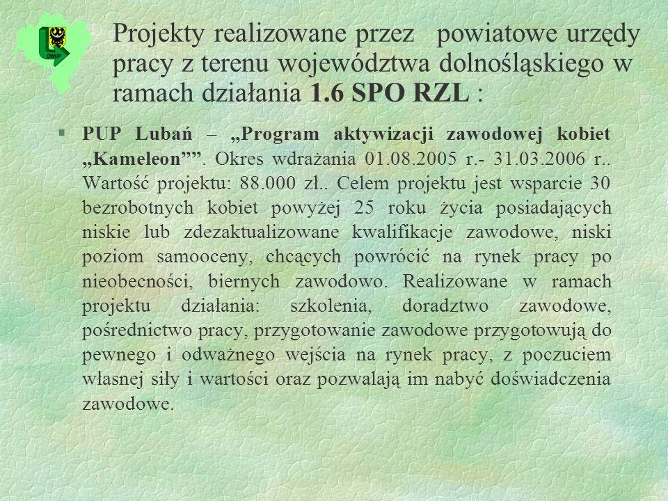 Projekty realizowane przez powiatowe urzędy pracy z terenu województwa dolnośląskiego w ramach działania 1.6 SPO RZL : §PUP Lubań – Program aktywizacji zawodowej kobiet Kameleon.