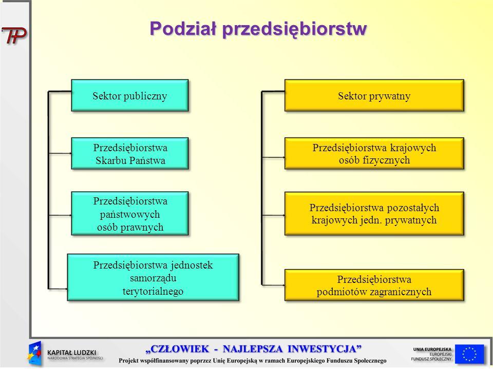 Podział przedsiębiorstw Sektor publicznySektor prywatny Przedsiębiorstwa państwowych osób prawnych Przedsiębiorstwa jednostek samorządu terytorialnego
