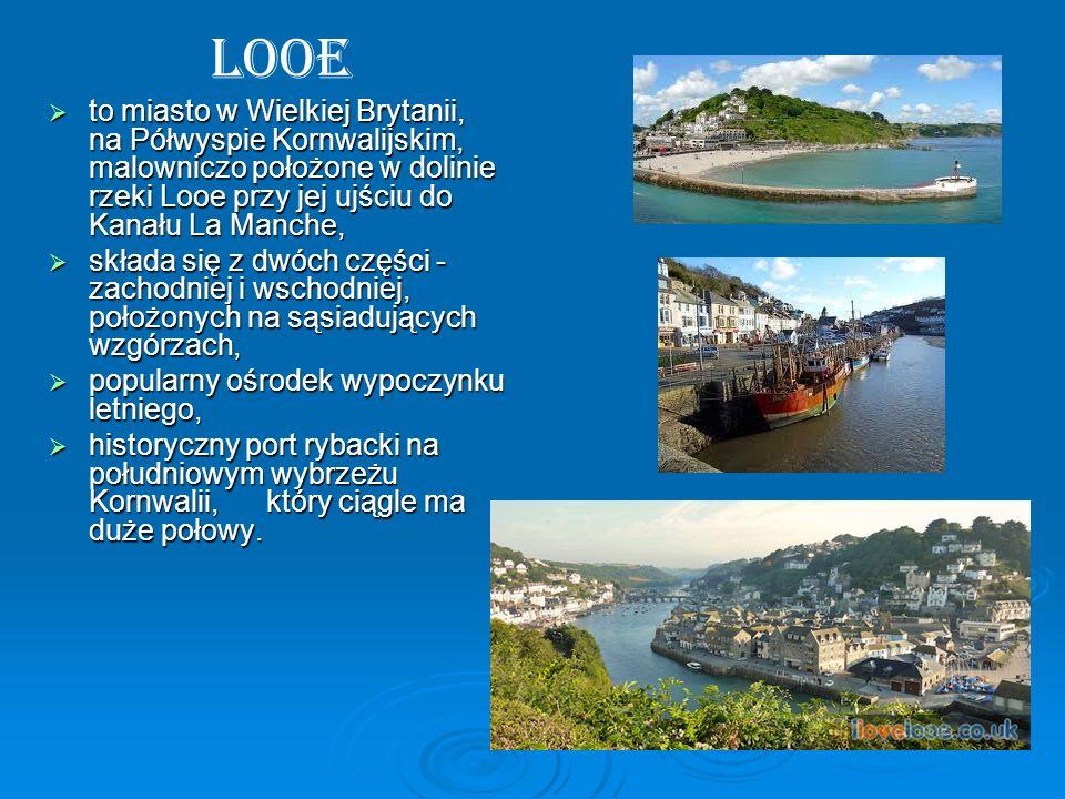 Looe to miasto w Wielkiej Brytanii, na Półwyspie Kornwalijskim, malowniczo położone w dolinie rzeki Looe przy jej ujściu do Kanału La Manche, to miast