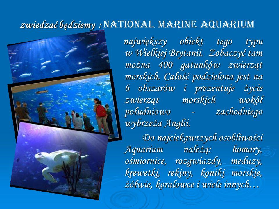 zwiedzać będziemy : zwiedzać będziemy : National Marine Aquarium największy obiekt tego typu w Wielkiej Brytanii. Zobaczyć tam można 400 gatunków zwie