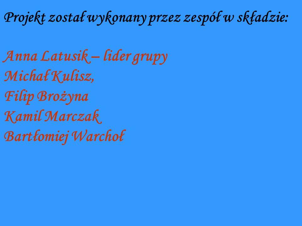 Projekt został wykonany przez zespół w składzie: Anna Latusik – lider grupy Michał Kulisz, Filip Brożyna Kamil Marczak Bartłomiej Warchoł