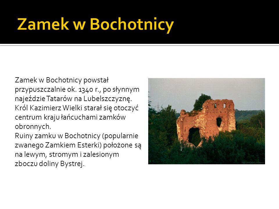Zamek w Bochotnicy powstał przypuszczalnie ok. 1340 r., po słynnym najeździe Tatarów na Lubelszczyznę. Król Kazimierz Wielki starał się otoczyć centru