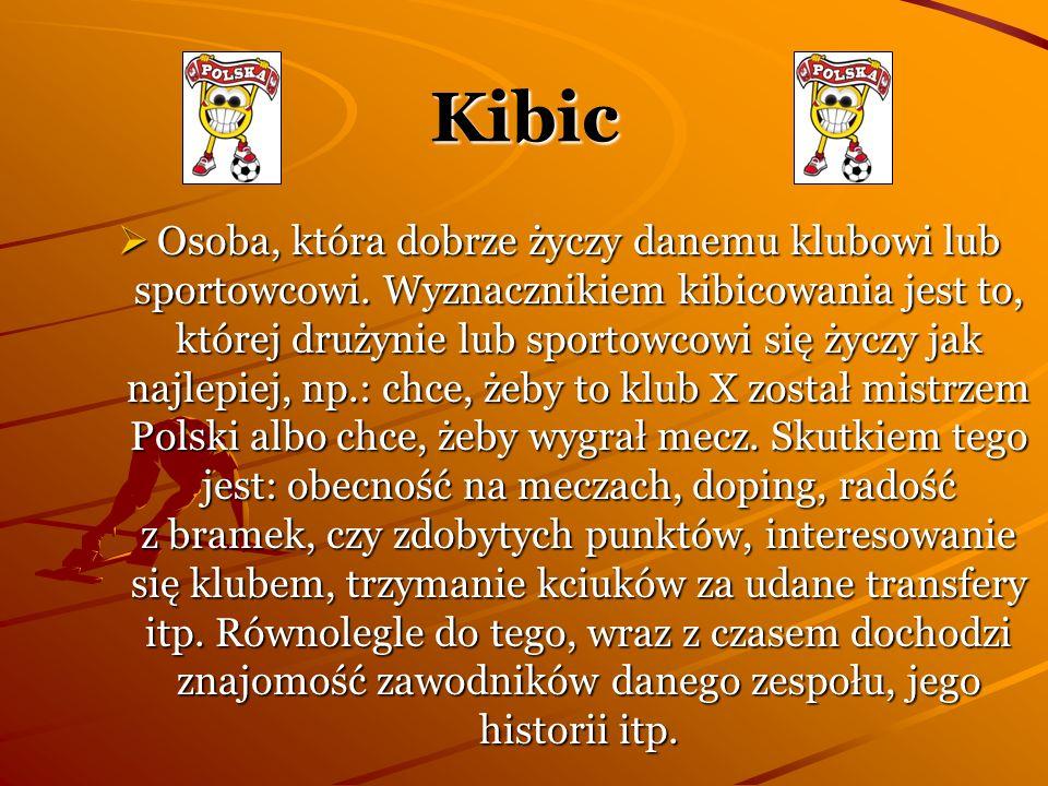Istnieją kluby kibica (nieformalne lub o charakterze stowarzyszeń), tworzone zazwyczaj przy klubach sportowych, a także przez osoby prywatne.