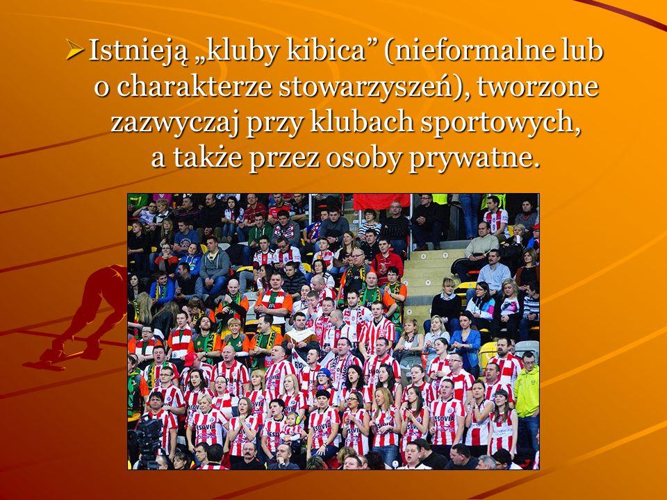 Istnieją kluby kibica (nieformalne lub o charakterze stowarzyszeń), tworzone zazwyczaj przy klubach sportowych, a także przez osoby prywatne. Istnieją