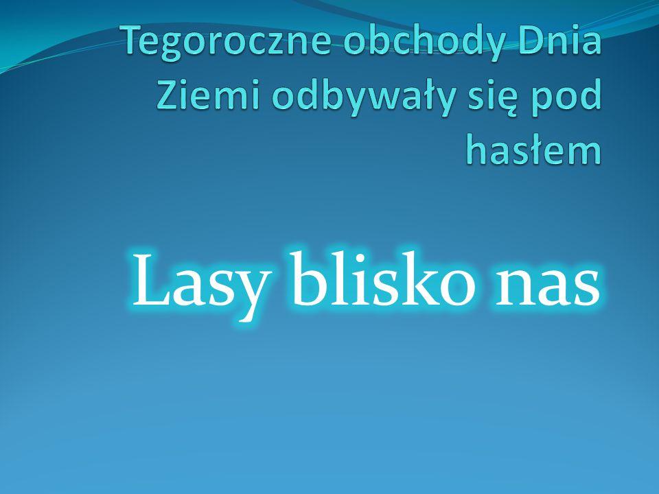 10 maja 2011 r. III gimnazjum LIKWIDOWAŁA DZIKIE WYSYPISKA