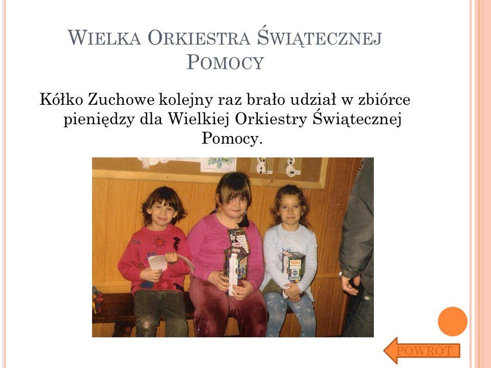 W IELKA O RKIESTRA Ś WIĄTECZNEJ P OMOCY Kółko Zuchowe kolejny raz brało udział w zbiórce pieniędzy dla Wielkiej Orkiestry Świątecznej Pomocy. POWRÓT