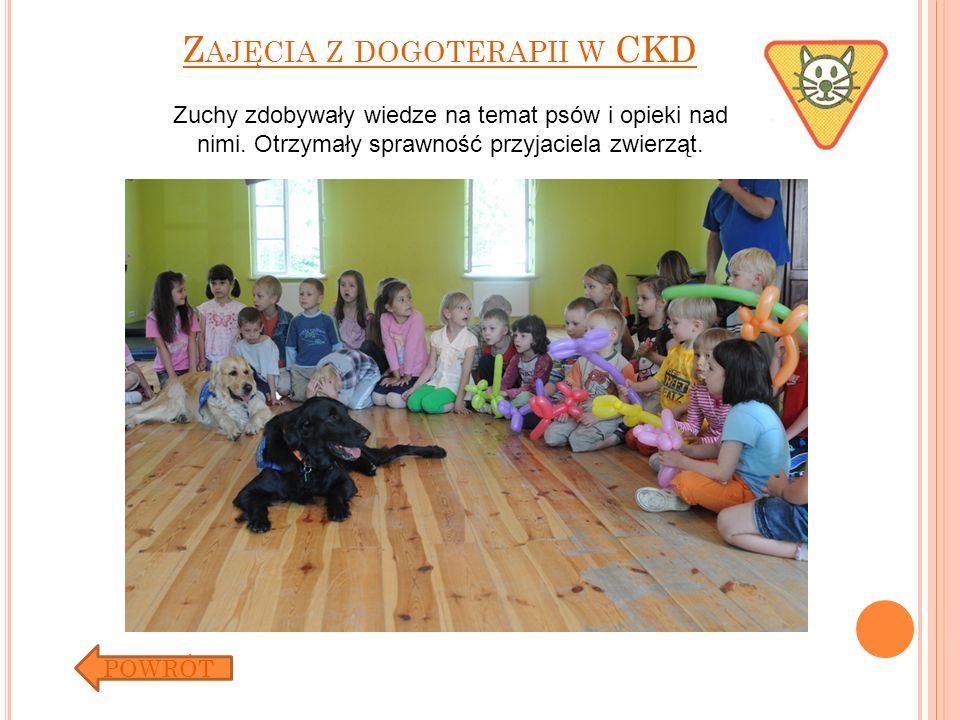 Z AJĘCIA Z DOGOTERAPII W CKD POWRÓT Zuchy zdobywały wiedze na temat psów i opieki nad nimi. Otrzymały sprawność przyjaciela zwierząt.