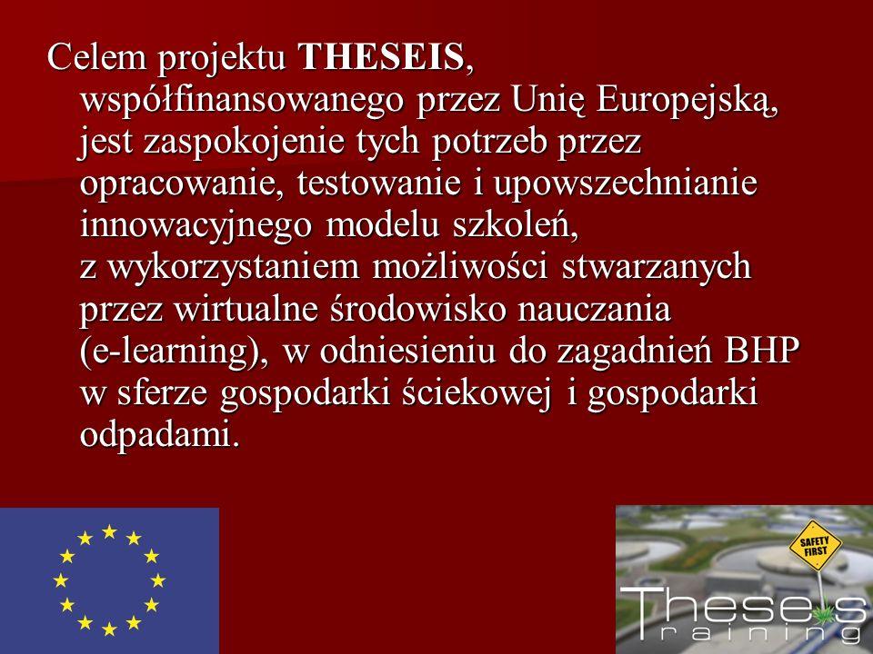 Celem projektu THESEIS, współfinansowanego przez Unię Europejską, jest zaspokojenie tych potrzeb przez opracowanie, testowanie i upowszechnianie innow
