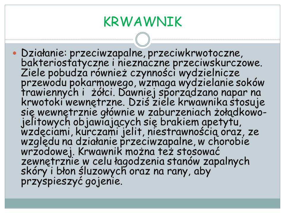 KRWAWNIK Działanie: przeciwzapalne, przeciwkrwotoczne, bakteriostatyczne i nieznaczne przeciwskurczowe. Ziele pobudza również czynności wydzielnicze p
