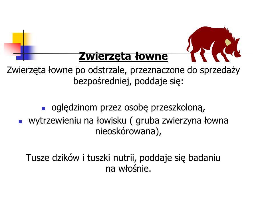 Zwierzęta łowne Zwierzęta łowne po odstrzale, przeznaczone do sprzedaży bezpośredniej, poddaje się: oględzinom przez osobę przeszkoloną, wytrzewieniu na łowisku ( gruba zwierzyna łowna nieoskórowana), Tusze dzików i tuszki nutrii, poddaje się badaniu na włośnie.