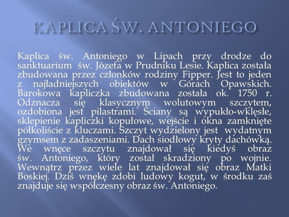 Kaplica św. Antoniego w Lipach przy drodze do sanktuarium św. Józefa w Prudniku Lesie. Kaplica została zbudowana przez członków rodziny Fipper. Jest t
