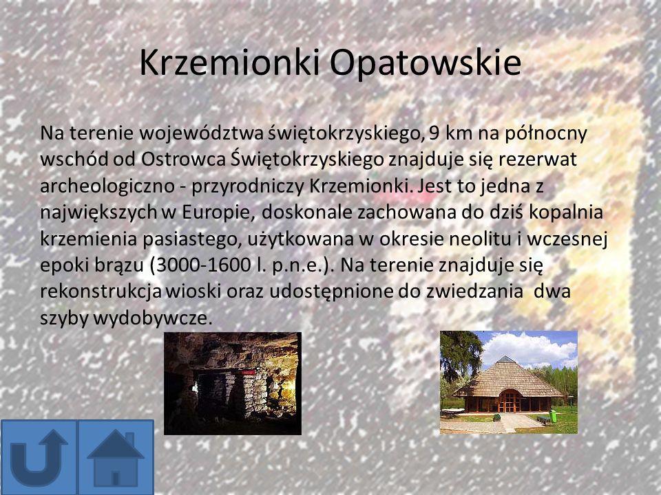 Krzemionki Opatowskie Na terenie województwa świętokrzyskiego, 9 km na północny wschód od Ostrowca Świętokrzyskiego znajduje się rezerwat archeologicz