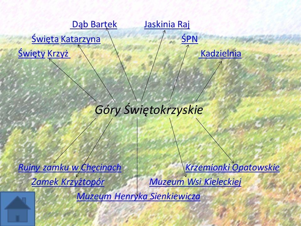 Krzemionki Opatowskie Na terenie województwa świętokrzyskiego, 9 km na północny wschód od Ostrowca Świętokrzyskiego znajduje się rezerwat archeologiczno - przyrodniczy Krzemionki.