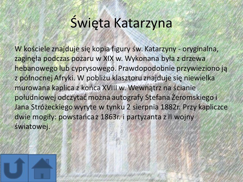 Dąb Bartek Na terenie Nadleśnictwa Zagnańsk przy drodze z Zagnańska do Samsonowa znajduje się legendarny dąb Bartek .