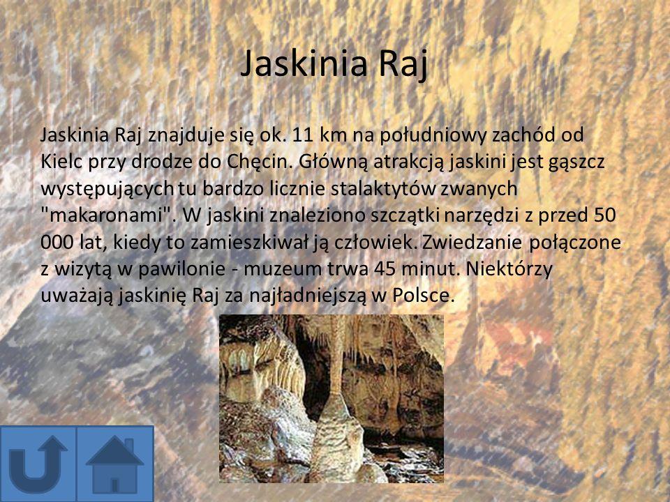 Jaskinia Raj Jaskinia Raj znajduje się ok. 11 km na południowy zachód od Kielc przy drodze do Chęcin. Główną atrakcją jaskini jest gąszcz występującyc