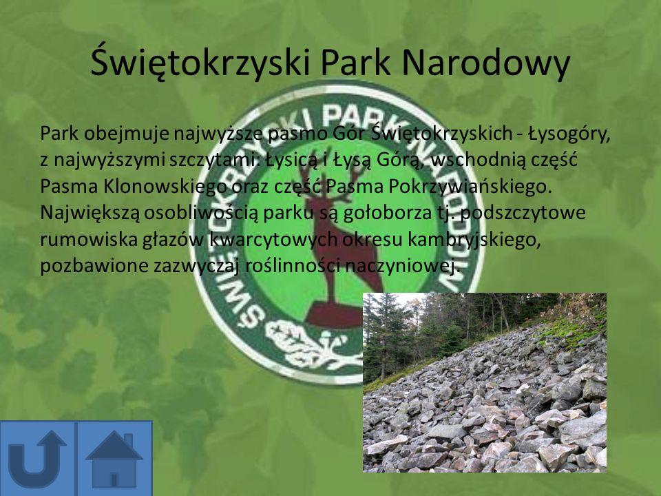 Świętokrzyski Park Narodowy Park obejmuje najwyższe pasmo Gór Świętokrzyskich - Łysogóry, z najwyższymi szczytami: Łysicą i Łysą Górą, wschodnią część