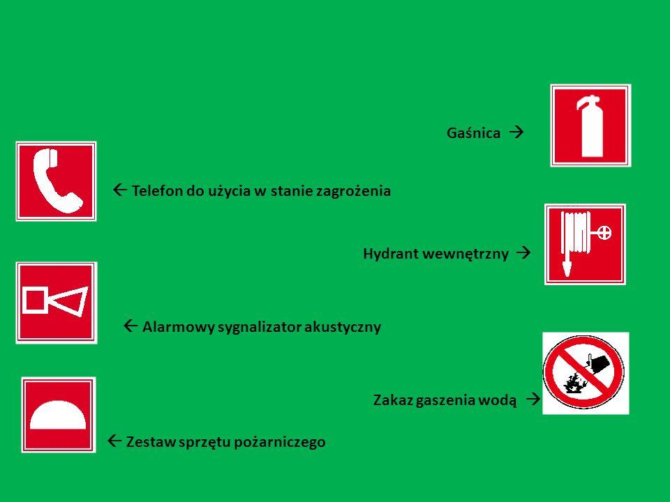 Gaśnica Telefon do użycia w stanie zagrożenia Hydrant wewnętrzny Alarmowy sygnalizator akustyczny Zakaz gaszenia wodą Zestaw sprzętu pożarniczego