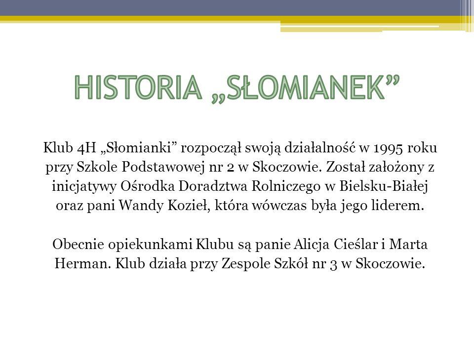 Klub 4H Słomianki rozpoczął swoją działalność w 1995 roku przy Szkole Podstawowej nr 2 w Skoczowie. Został założony z inicjatywy Ośrodka Doradztwa Rol